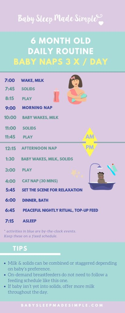 6 month old Daily Schedules 3 nap